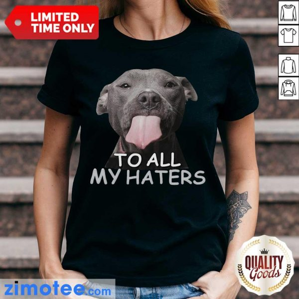 Awesome Pitbull To All My Haters Ladies Tee