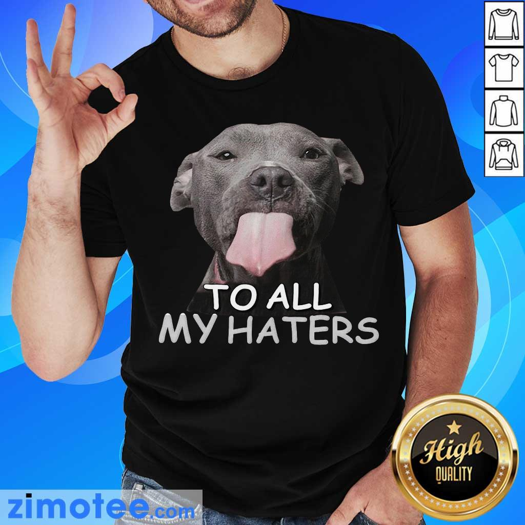 Awesome Pitbull To All My Haters Shirt