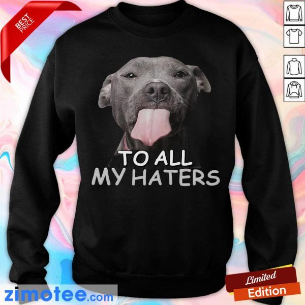 Awesome Pitbull To All My Haters Sweater