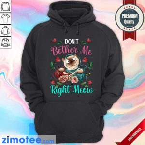 Crochet Don't Bother Me Right Meow Hoodie