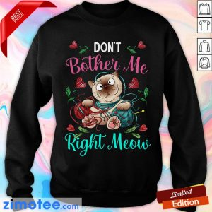 Crochet Don't Bother Me Right Meow Sweater