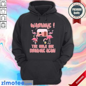 Warning The Girls Are Drinking Again Flamigo Camping Hoodie